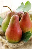 ripe juicy pears Stock Photos