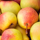 Ripe juicy pears close up Royalty Free Stock Photos