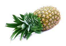 Ripe juicy pineapple. Royalty Free Stock Image