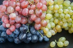 Ripe juicy pink, blue and white grapes. Selective focus Stock Image