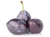 Ripe juicy plum Royalty Free Stock Photo