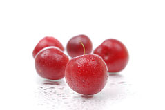 Ripe and juicy plums on white Royalty Free Stock Images