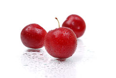 Ripe and juicy plums on white Stock Photos