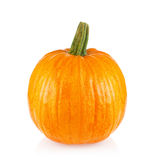 Ripe juicy pumpkin Stock Photo