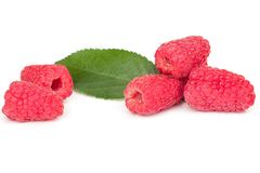 Ripe juicy raspberries on white table. On a white background Royalty Free Stock Photos