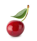 Ripe juicy red cherries with leaves royalty free stock photos