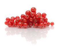 Ripe juicy red currant berries on a white background with reflec Stock Photos