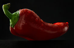 Ripe and juicy red pepper. With seeds on a dark background Stock Photography