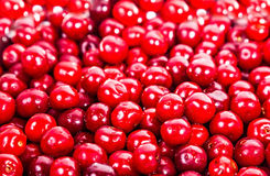Ripe juicy red sweet cherries Stock Photos
