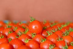 Ripe juicy tomatoes in box stock photography