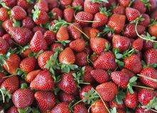 Ripe juicy strawberries closeup. Great background for a label jam, berry jam, strawberry juice, fruit wine Stock Photos
