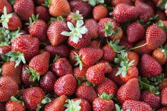 Ripe juicy strawberries closeup. Great background for a label jam, berry jam, strawberry juice, fruit wine Stock Image