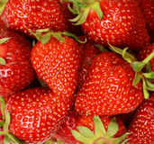 Ripe juicy strawberry Stock Photos