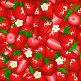 Ripe juicy strawberry seamless background. Vector card illustration. Stock Image