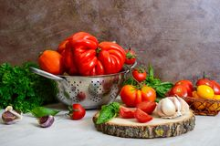 Ripe juicy tomatoes of different varieties, green fragrant basil, garlic stock photography