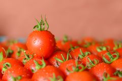 Ripe juicy tomatoes stock photography