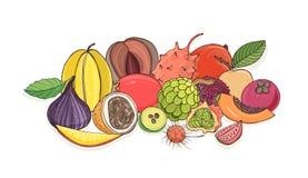 Ripe juicy tropical fruits lying together isolated on white background - tamarillo, passion fruit, mentega, fig. Carambola, feijoa, papaya, longan, rambutan Royalty Free Stock Image