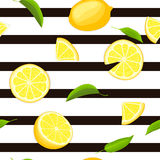 Ripe juicy tropical lemon striped seamless background. Vector card illustration. Fresh citrus yellow lime fruit, leaf on black lines. Seamless pattern for Royalty Free Stock Photo