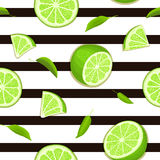Ripe juicy tropical lime striped seamless background. Vector card illustration. Stock Images