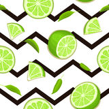 Ripe juicy tropical lime striped seamless background. Vector card illustration. Stock Photo