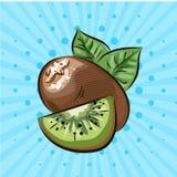 Ripe kiwi on a blue background, lines, points.Hand drawn.Vector illustration.Eco food. Ripe kiwi on a blue background, lines, points. Hand drawn. Vector Stock Image