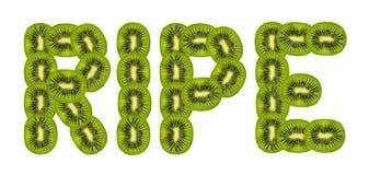 Ripe kiwi fruit Stock Image