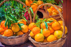 Ripe large oranges in a wicker basket Royalty Free Stock Image