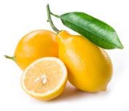 Ripe lemon fruits on the white. Royalty Free Stock Photos