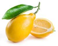Ripe lemon fruits. Stock Photo