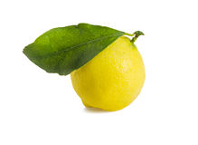 Ripe lemon with green leaf on white. Royalty Free Stock Photos