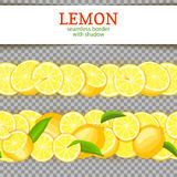 Ripe lemon horizontal seamless borders. Vector illustration card Wide and narrow endless strip with Juicy yellow lime Royalty Free Stock Images