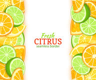 Ripe lemon orange lime vertical seamless border. Vector illustration card with composition Juicy fresh fruits slice Royalty Free Stock Photo