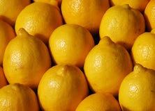 Ripe lemons. Rows of ripe lemons on market stall Royalty Free Stock Photo