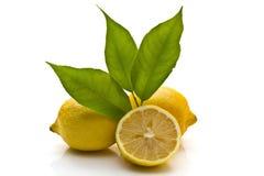 Ripe lemons. Isolated on white Stock Photo