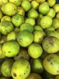 Ripe lemons. Beautiful shot of fresh lemons Royalty Free Stock Images