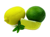 Ripe lemons and Laim Stock Photo