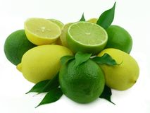 Ripe lemons with leaflets Stock Photography