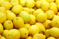Ripe lemons for lemonade Stock Images