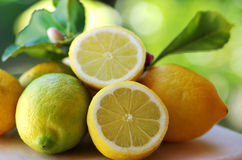 Ripe lemons on table Royalty Free Stock Photography