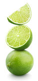 Ripe lime citrus fruit isolated on white Stock Images