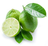 Ripe lime fruits. Ripe lime fruits on the white background Royalty Free Stock Photo