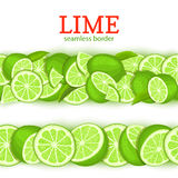 Ripe lime horizontal seamless borders . Vector illustration card Wide and narrow endless strip with Juisy green lemon Stock Photos