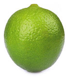 Ripe lime isolated Royalty Free Stock Photo