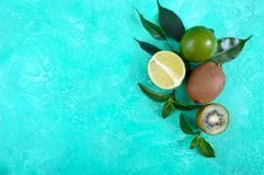 Ripe lime and kiwi fruit. Whole and cut fruits and mint leaves on a bright background. stock photos