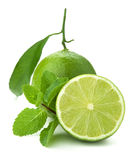Ripe lime and mint Royalty Free Stock Images