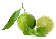 Ripe lime and mint Stock Photos