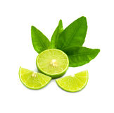 Ripe limes with green leaf. Isolated on white background. As package design element Stock Images