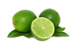 Ripe limes with leaves () Royalty Free Stock Photography