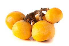 Ripe loquat or Eriobotrya japonica with leaf on white background stock image