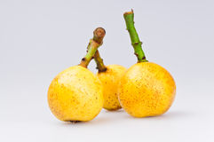Ripe Loquat Fruits Royalty Free Stock Photography
